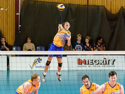 Australian Volleyball League
