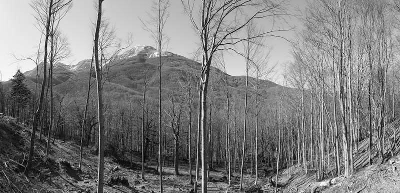 Alpe di Succiso (?) - Collagna, Reggio Emilia, Italy - April 1, 2015