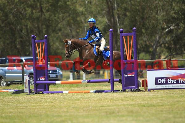 2014 11 09 Swan Valley Hunter Trials Round 1 45cm