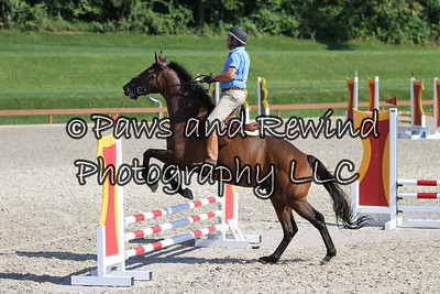 Grand Prix Ring: Level 0 Jumpers