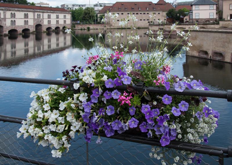 Strasbourg32.jpg