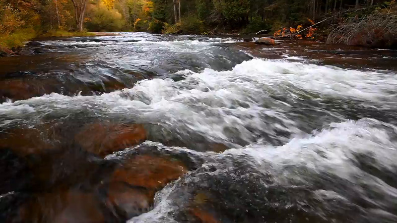 Autumn Awash - Mays Ledges (Brule River - Brule River State Forest)