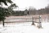 Snowday 029 gcopy