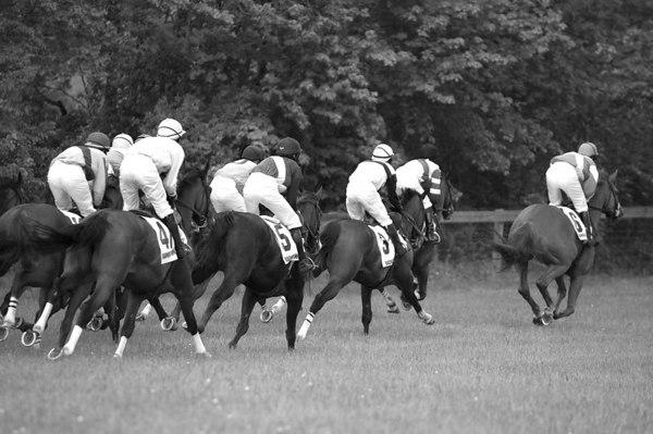Radnor Hunt 2006