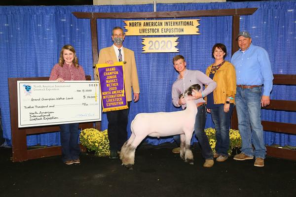 Top Five Market Lambs
