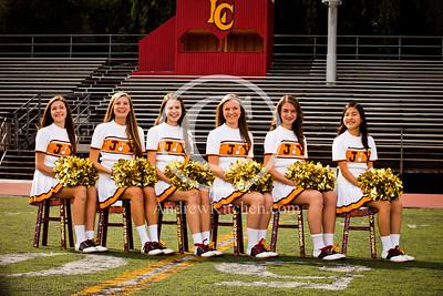 LCHS Cheer 2013