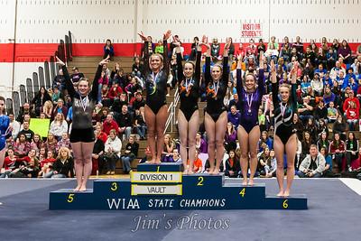 Madison Memorial Gymnastics - March 08, 2014
