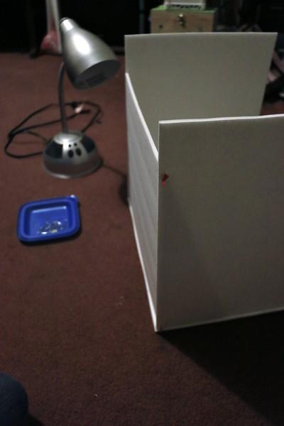 LightBox_0012.JPG