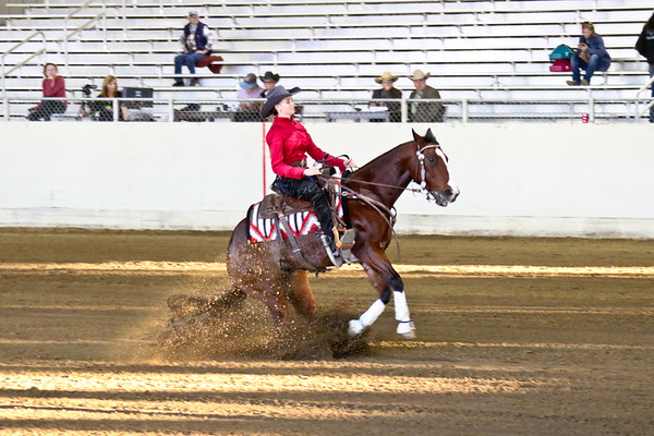 Non Pro Limited Reining and Boxing