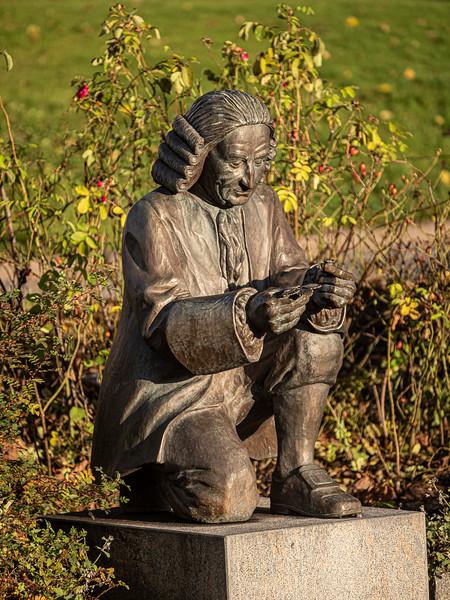 Linnaeus.jpg