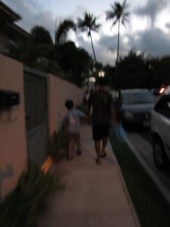 Hawaii - July 4th 2010
