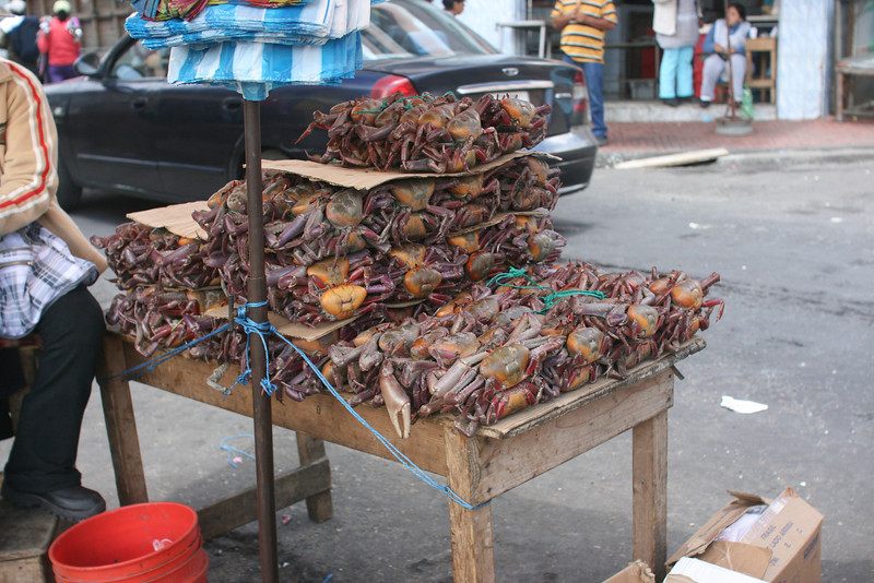 Crabs at the market in Quito