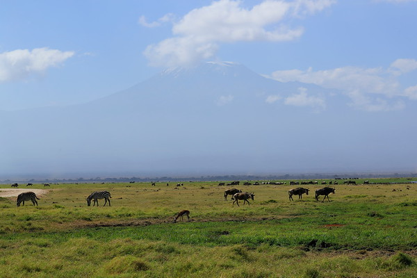 Scenic Kenya 2017