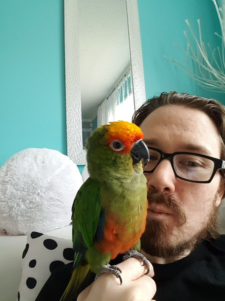Wasabi loves kisses.  He will even kiss back with smooch sounds!