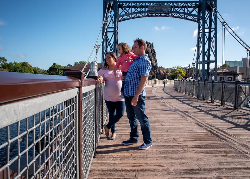 Cuda family DS metal bridge II.jpg