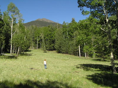Kachina Peaks Wilderness  - Jun 2006