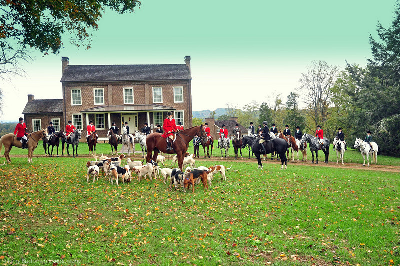 Fox Hunt_0048_edited-1.jpg