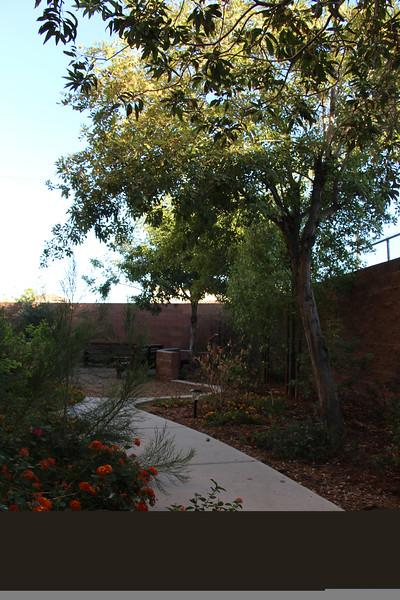 Shade Tree IMEX Challenge Healing Garden