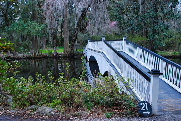 Magnolia Gardens, Charleston SC