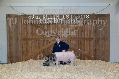 2018 KISD Auction Extra