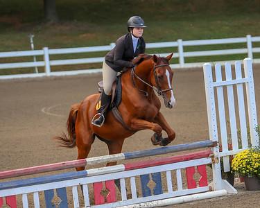 UNG Equestrian