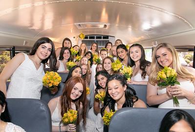 Bus Rides