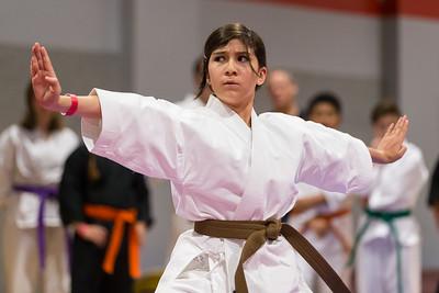 Biggest Little Martial Arts Jamboree | 2018