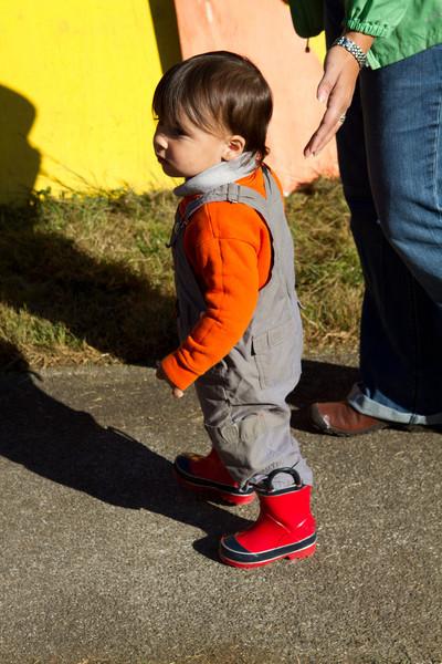 PumpkinPatch2012-7.jpg