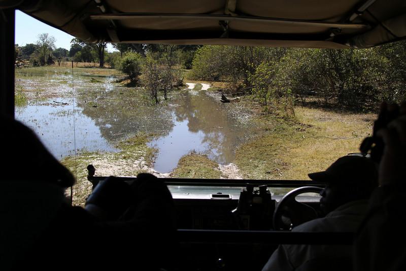 On safari through the water