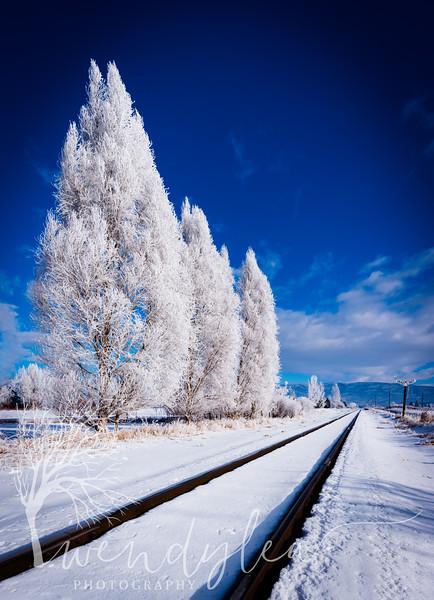 wlc Frost 010117January 01, 2017-Pano-Edit.jpg