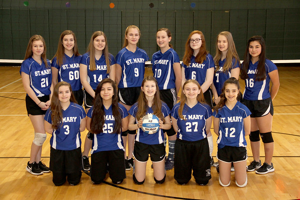 2018 Girls Volleyball