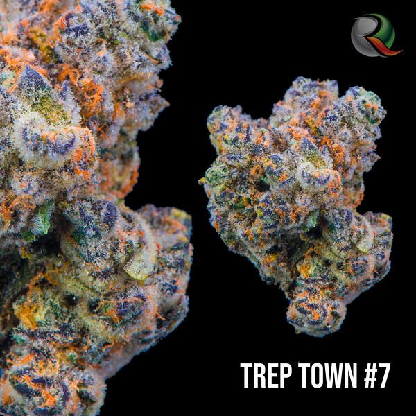 Terp town #7.jpg