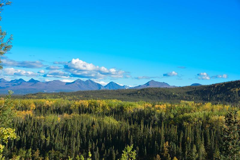 Denali-National-Park-47.jpg