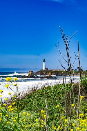 Pigeon Point Lighthouse 1
