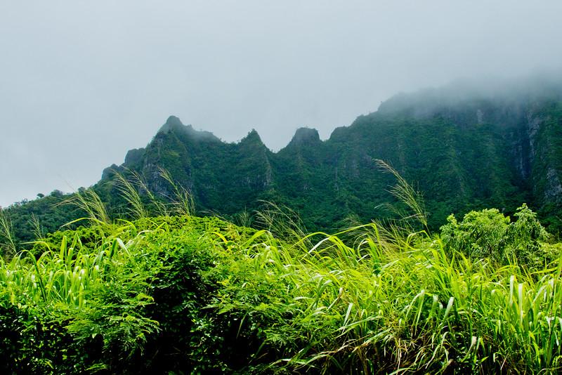 Journey into Oahu Photograph 53