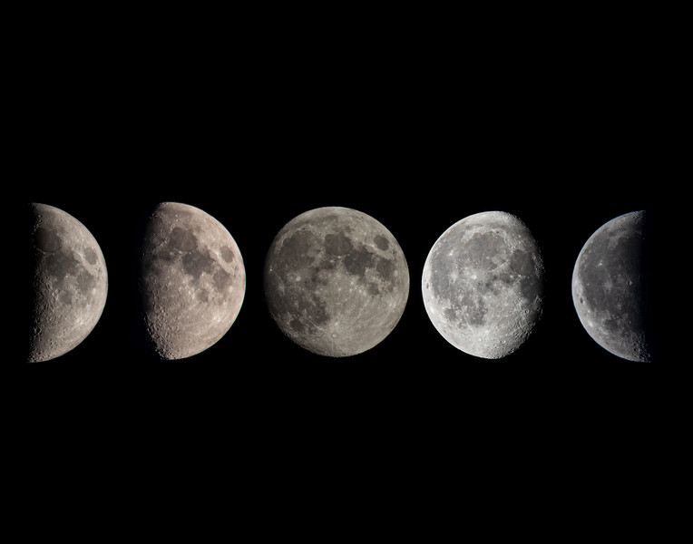 Moon Poster all phases.jpg