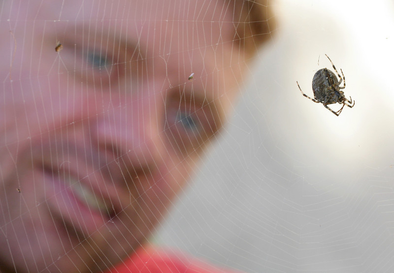 9137 Rob and Spider.jpg