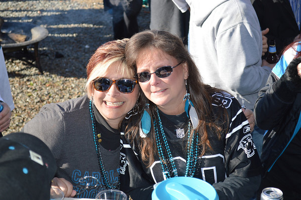 Panthers vs Jets December 15 2013