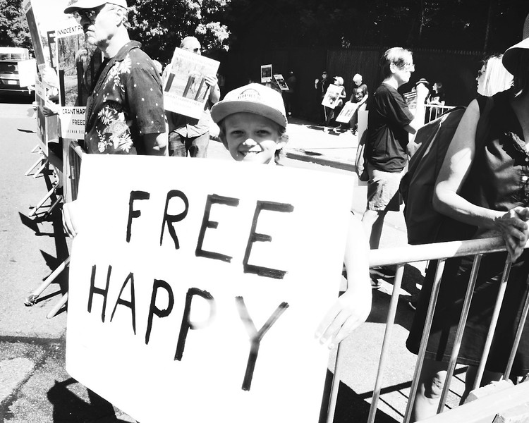"Nonhuman Rights Project presents the: ""Rally for Freedom for Happy"" on August 10, 2019 at the Bronx Zoo in New York City."