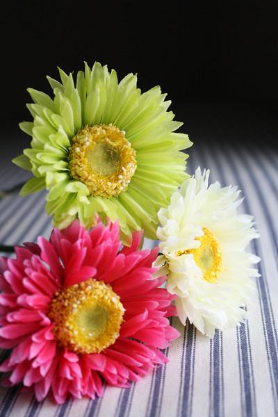 triflower.jpg