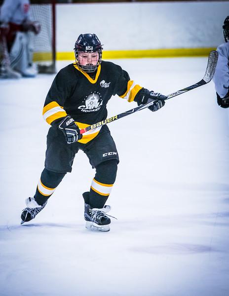 Bruins2-689.jpg