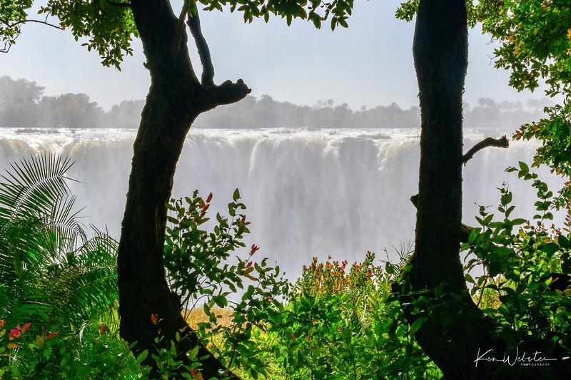 2019 Africa FB Select-106.jpg