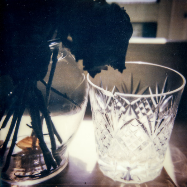 polaroid-glass-flowers031.jpg