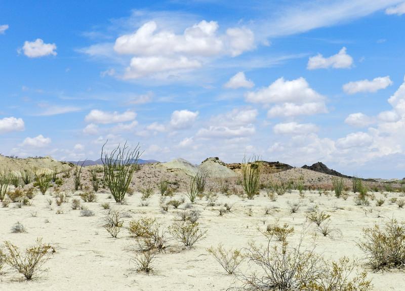 BBNP across the desert view.jpg