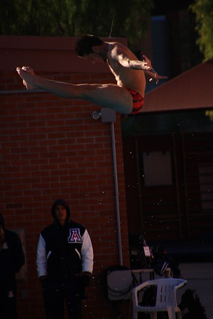 University of Arizona Diving