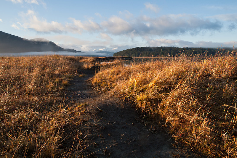 My favorite shot of a path in the wetlands, which to me gives sense of being there.