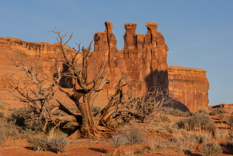 The Gossips - Arches National Park