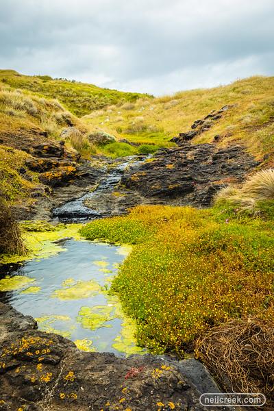 creek191205-0010.jpg
