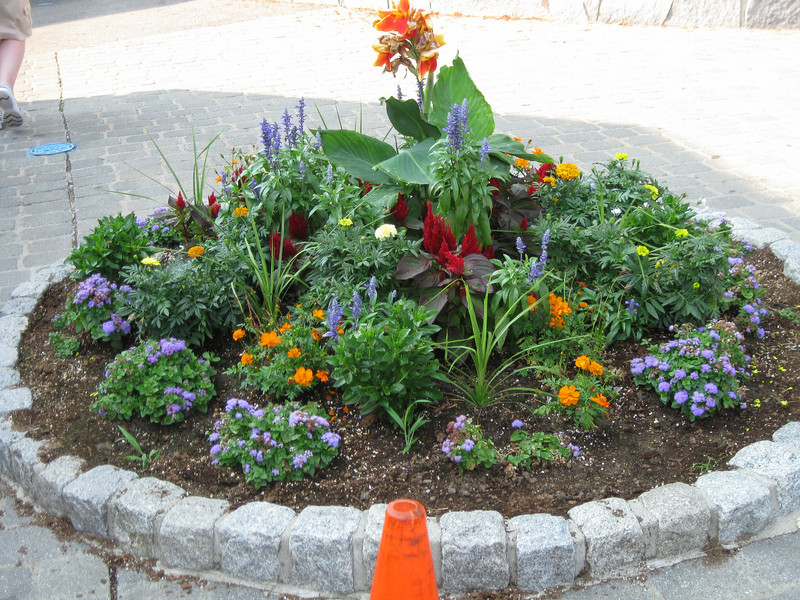 Landscaping in front of Minuteman Fried Clams.