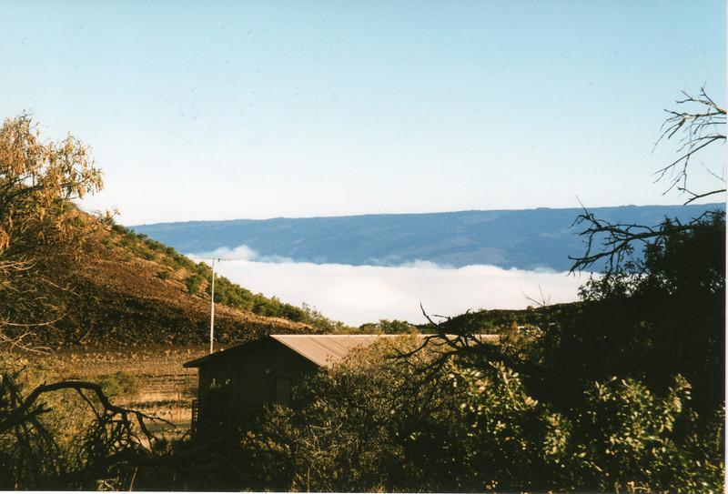199806-hawaii-09212.jpg